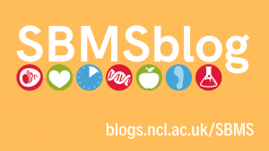 Welcome to the official blog of the School of Biomedical Sciences, Newcastle University
