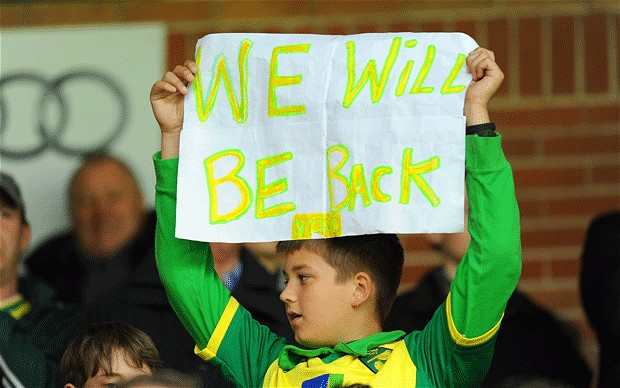 As a Norwich City fan relegation is something I've grown very used to