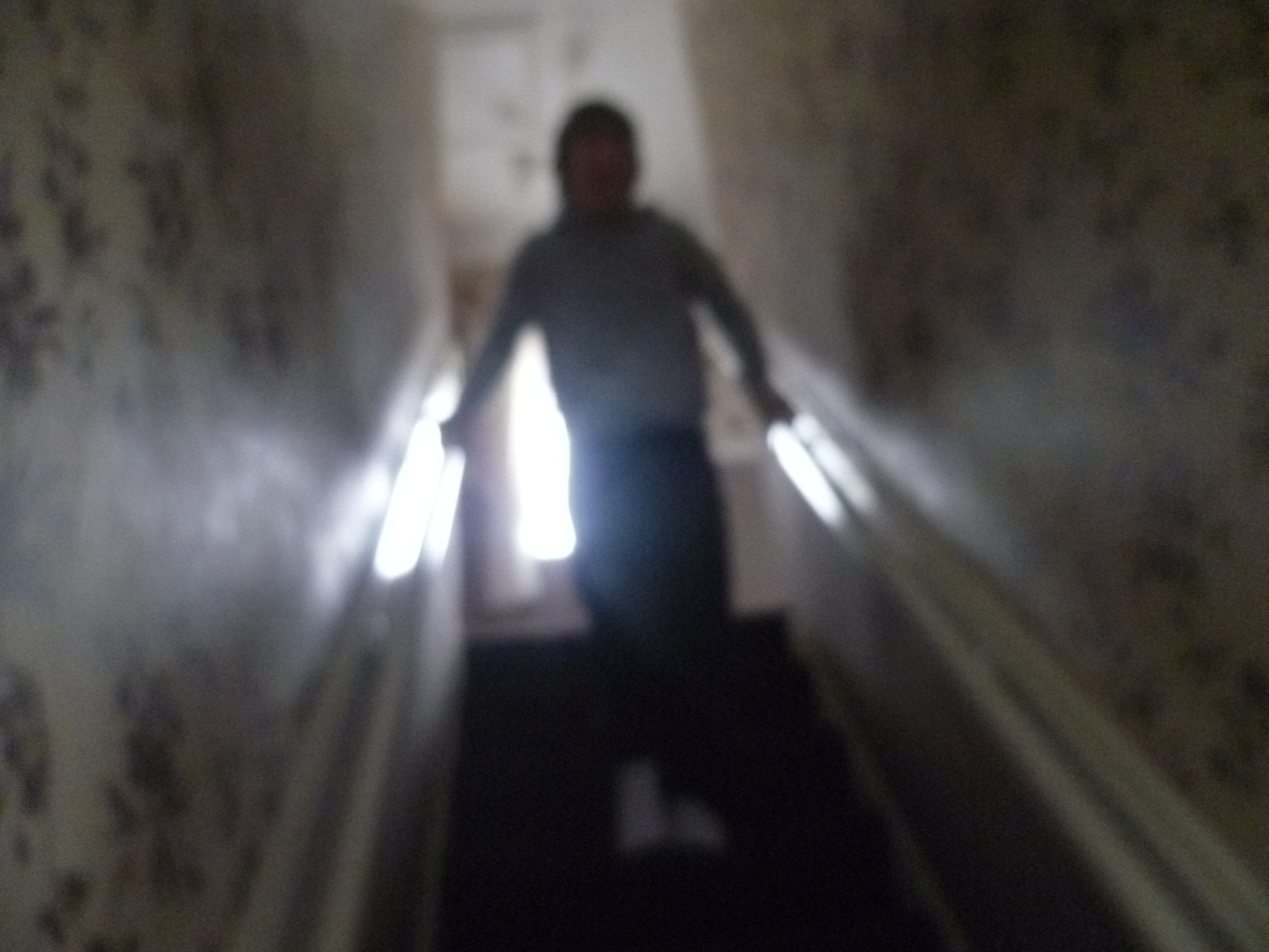 Photograph taken by a research participant's dad to show how he gets downstairs