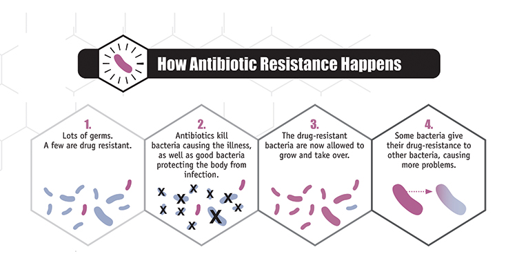 2-how-antibiotic-resistence-happens