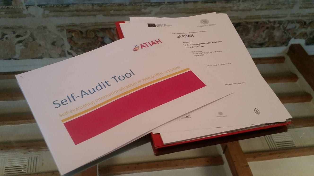Image of Self Audit Tool document