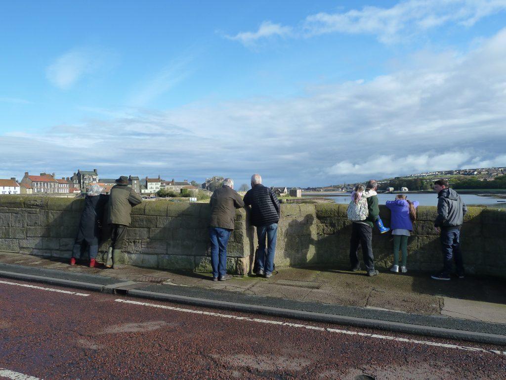 Crowd on Old Bridge
