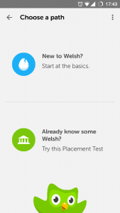 A Comprehensive Review of DuoLingo | Paddy's Reviewing Website
