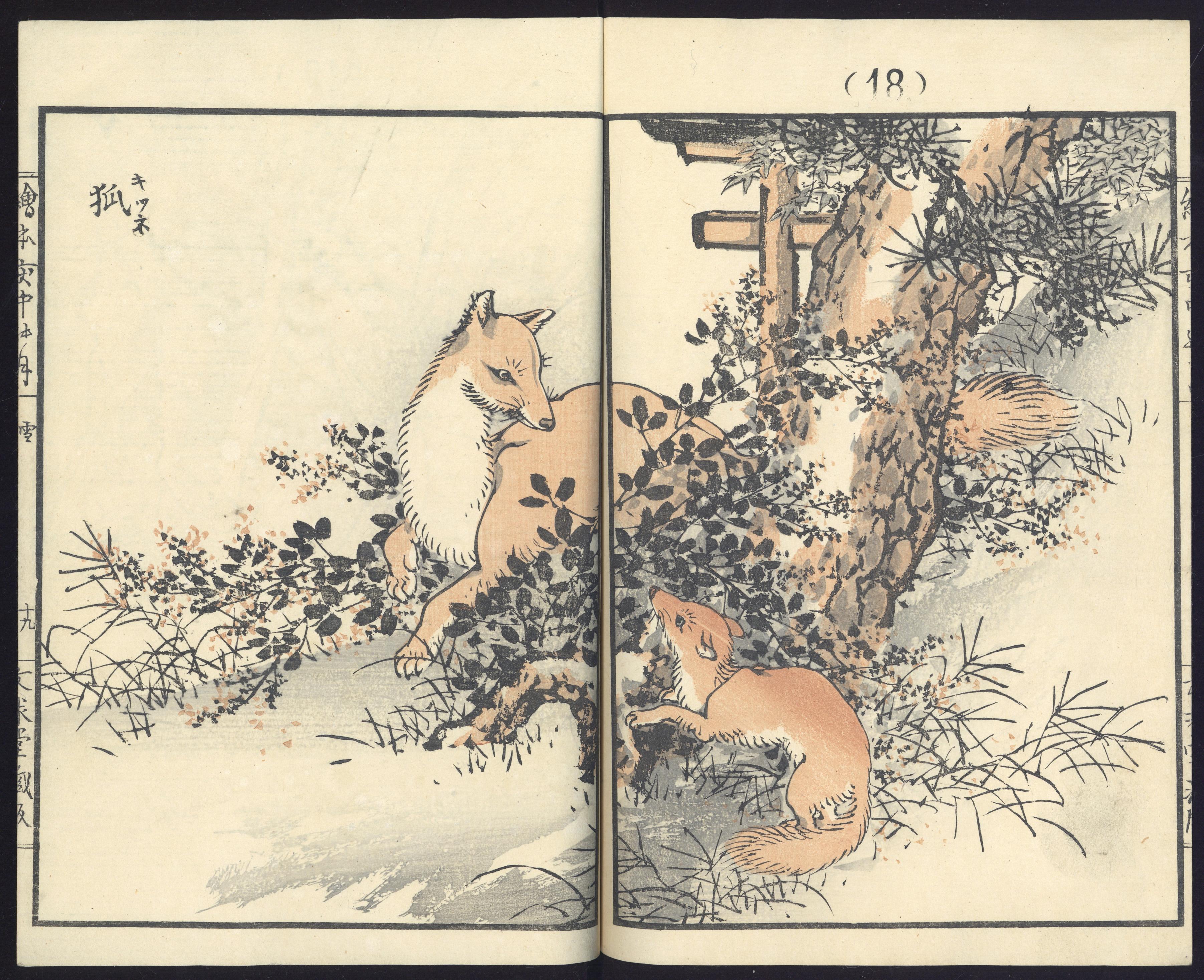 Ukiyo E Special Collections