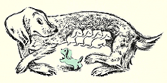 Illustration of a mother dog with sleeping pups by her side and one pup which is coloured a pastel green colour from Blue Peter.