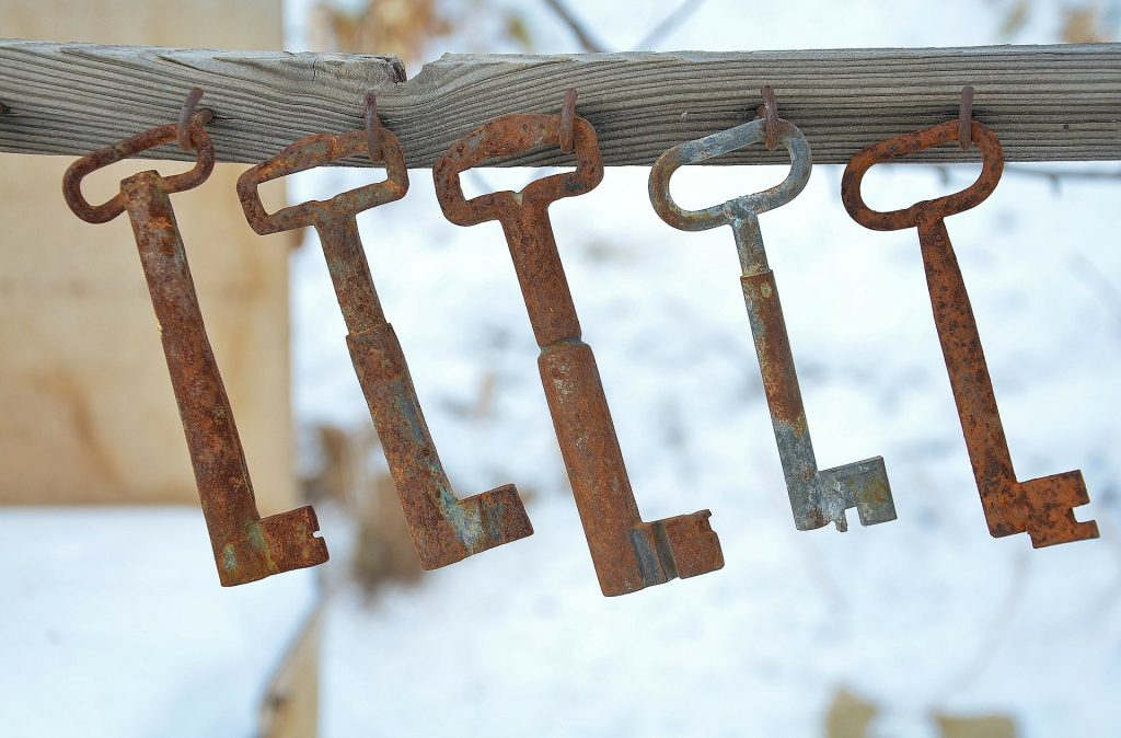 Keys hanging on hooks on a piece of wood.