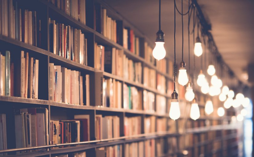 Bookshelves lit up by a row of ceiling strung bulbs.