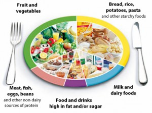 Eatwell plate diet