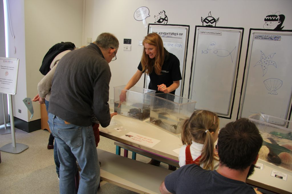 Faculty Outreach Officer Charlotte Foster introduces families visiting Seven Stories to different crab species. Image: Newcastle University